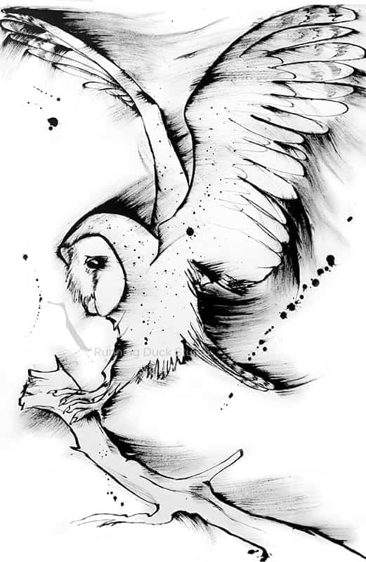 Running Duck Studio Ink Gallery - Barn owl artwork by running Duck Studio artist