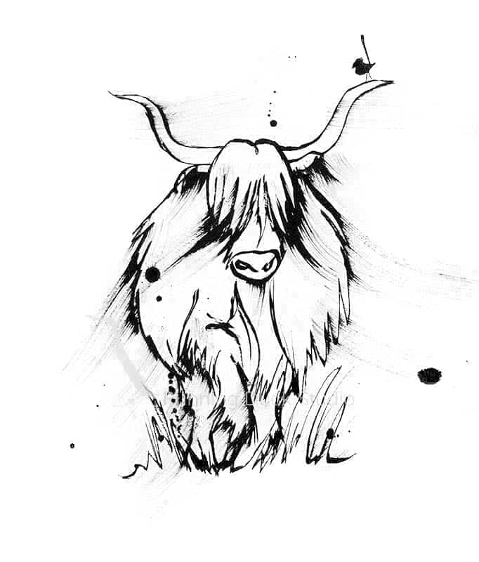 Long hared cow artwork