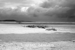 beach scene in black and white